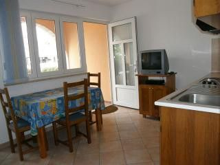 Appartment Br.2 in Vrsar 3