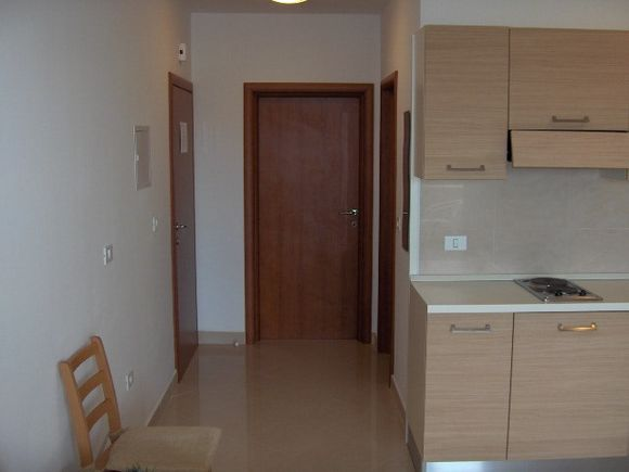 Appartment App br. 3 in Mandre 1
