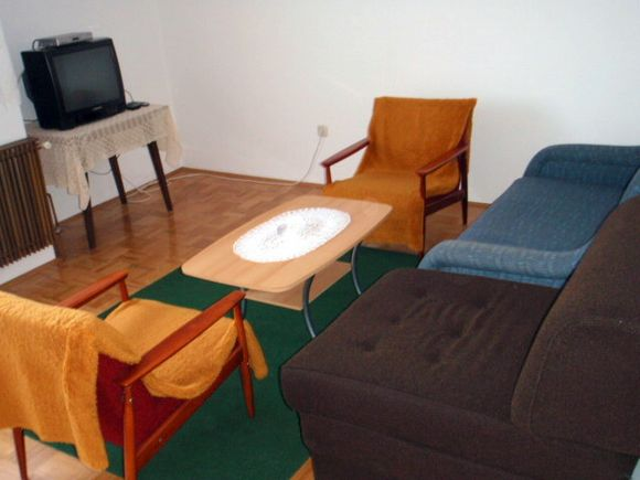 Appartment Apartman br 3 in Grabovac 3