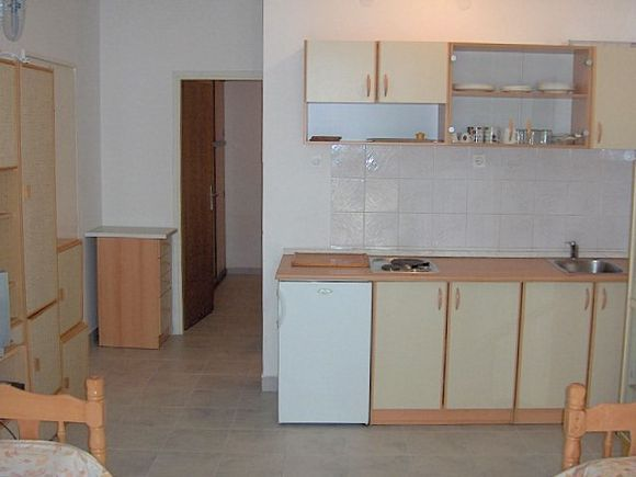 Appartment App br. 1 in Novalja 1
